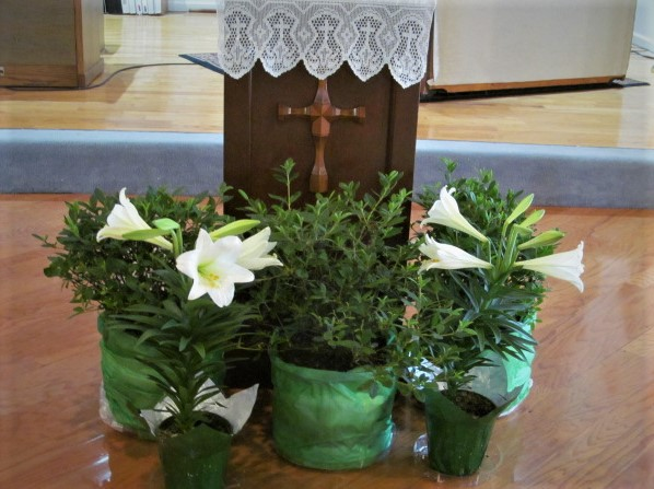 Photo of Easter Lilies at Easter Service